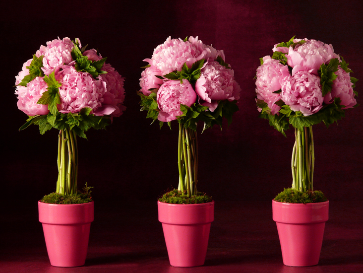 Le fleuriste du coin bouquets de fleurs for Bouquet fleuriste